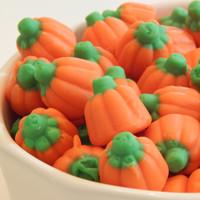 Pumpkins 1 lb. bag