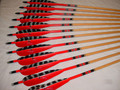 "Pro Series, Red Crown, Red and Traditional Barred 5"" Parabolic Feathers"