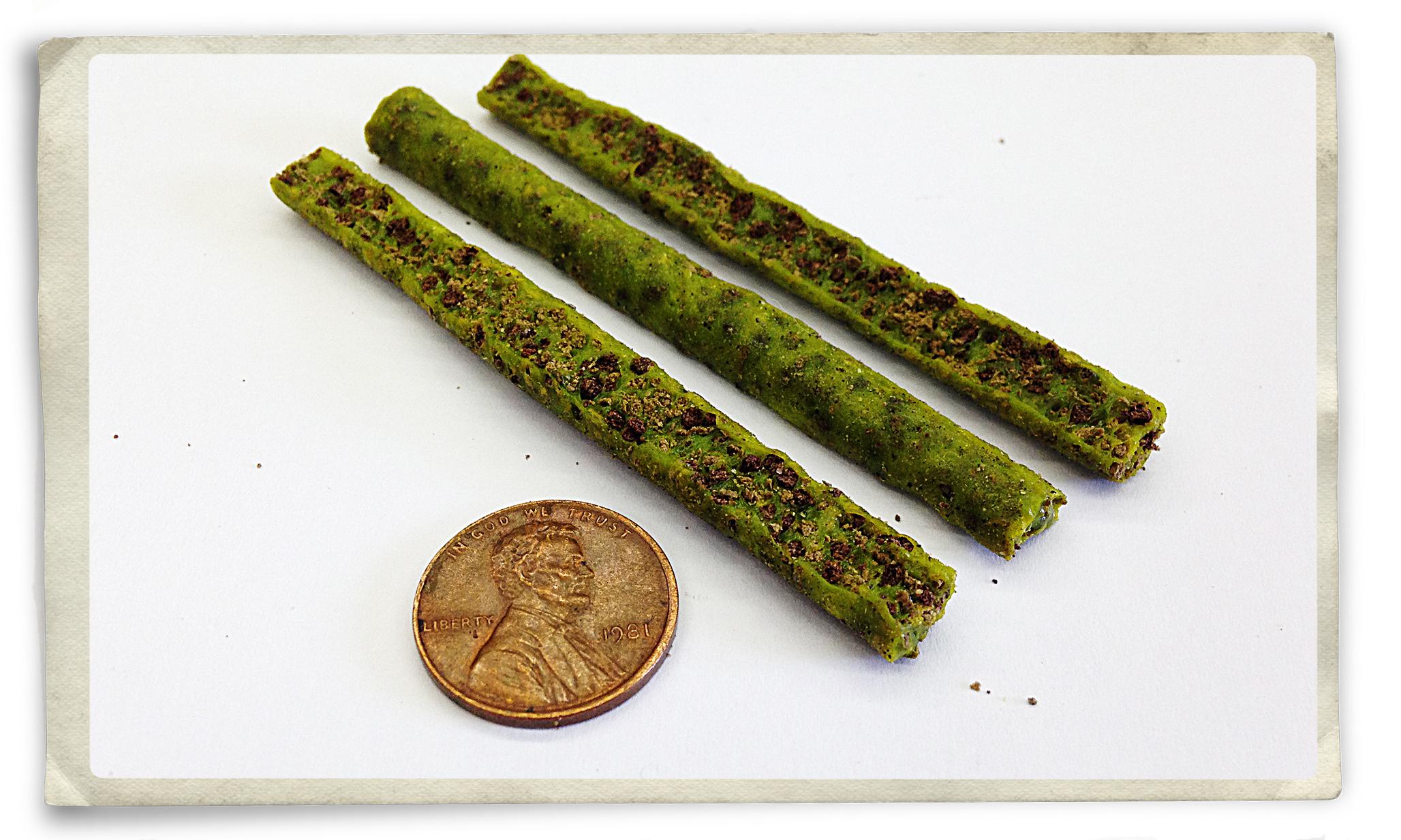 new-lbug-3-inch-worms.jpg