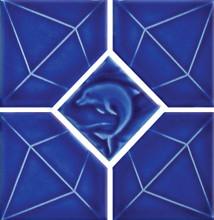 Blueberry 6x6
