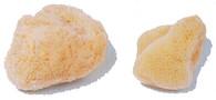 All Natural Sea Sponge