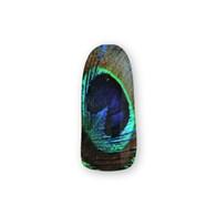 Nail Wrapz- Peacock