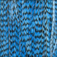 Long Striped Blue Feather Extensions
