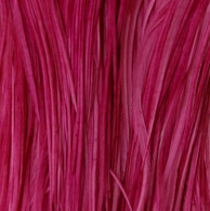 Long Solid Raspberry Feather Extensions