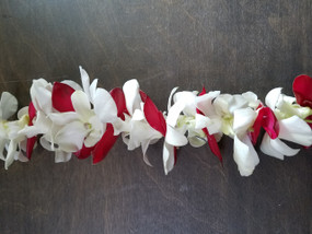 White orchids with red Ginger leaves