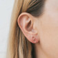 Mini Crystal Earrings