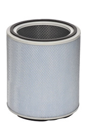 Austin Air FR405B Allergy Machine Standard Replacement Filter, White