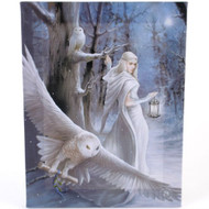 Anne Stokes Midnight Messenger Canvas Art Print by Anne Stokes 7 x 10