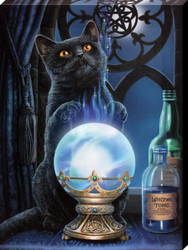 Lisa Parker Witches Apprentice Cat Canvas Art Print by Lisa Parker 7 x 10
