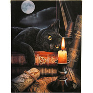 Lisa Parker Witching Hour Canvas Art Print by Lisa Parker 7 x 10