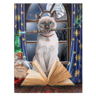 Lisa Parker Hocus Pocus Cat Canvas Art Print 7.5 x 10 Inch