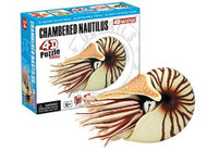 """Fame Master Enterprise Build Your Own Chambered Nautilus Fossil Model 3D Puzzle for Age 6+ (24 Piece), 3"""""""