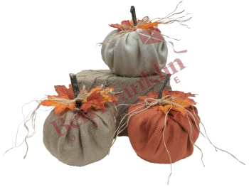 tp-pumpkins-logo-small.jpg