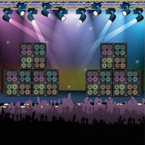 Rock Star Stage Wall Poster Backdrop Banner