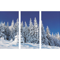 Winter Scene Backdrop 9'