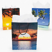 http://d3d71ba2asa5oz.cloudfront.net/12001231/images/sun_beach_wedding_bags2.jpg