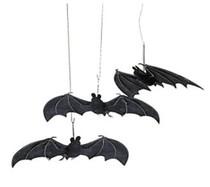 https://d3d71ba2asa5oz.cloudfront.net/12001231/images/hanging_bats.jpg