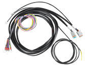 AVS VALVE WIRING HARNESS 12', 17', 22' - ACCUAIR ENDO TANK TO AVS 7-SWITCH BOX