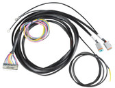AVS VALVE WIRING HARNESS 12', 17', 22' - ACCUAIR ENDO TANK TO AVS 9-SWITCH BOX