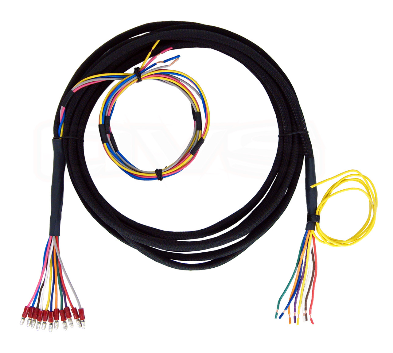 7 Wire Wiring Harness Best Electrical Circuit Diagram Universal Avs Valve 10 15 20 To Switch Rh Avsontheweb Com 4 Plug