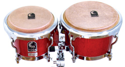 4600-toca-bongos.jpg