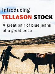 Tellason Stock