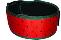 Watermelon! Straight Belt (w/ WODclamp®)