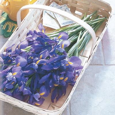 Peterboro Flower Gardening Tote