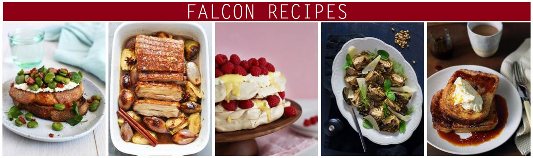 falcon-recipes-banner.jpg
