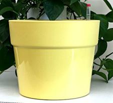 classic-beige-2219-225x206.jpg