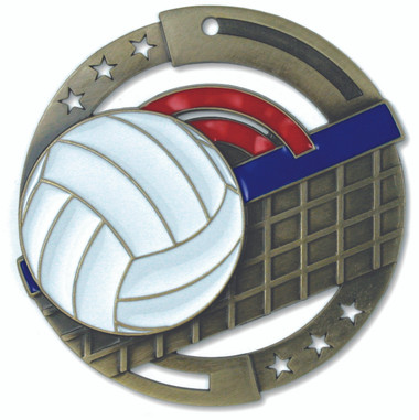 Volleyball Enameled Medal from Cool School Studios.