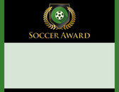 Gold Shield Soccer Award from Cool School Studios.