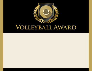 Gold Shield Volleyball Award from Cool School Studios.