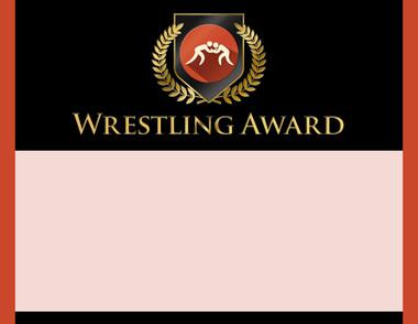 Gold Shield Wrestling Award from Cool School Studios.