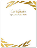 Gold Foil Embossed Certificate of Completion from Cool School Studios.