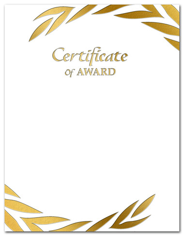 Gold Foil Embossed Certificate of Award from Cool School Studios.