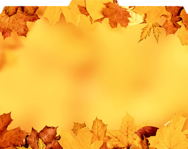 Images shows folded view of Autumn Leaves File-'N Style Folder with 1/3 tab cut.