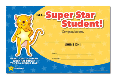 Shown is the YOU'RE A STAR Super Star Student Award (Cool School Studios 03011).