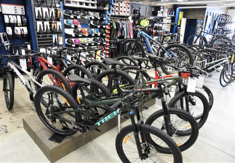 2019 Trek Bikes