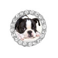 personalize dog photo sneaker charm