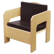 WD31500BN Chair w/Brown Cushion