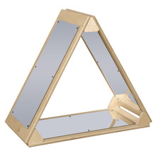 WD990251 Mirror Triangle