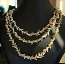 Vintage Australian Tasmanian Maireener Shell Necklace