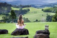 The Serene Setting At Gaia Retreat & Spa