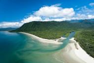 Rainforest Meets Reef
