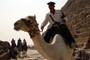 Cops On Camels