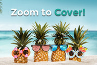 Zoom Travel Insurance