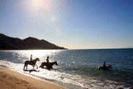 Horse Riding On Magnetic Island