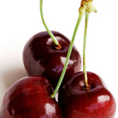 Black Cherry Flavor water soluble  A very realistic, fresh cherry flavor, true to the actual berry rather than a candylike or maraschino flavor.  Ingredients:Natural & Artificial Flavor, Propylene Glycol, Water