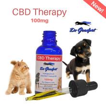CBD Therapy 100